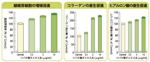 線維芽細胞の賦活効果グラフ